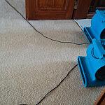 Czyszczenie wykładzin,dywanów,tapicerek 784-401-721 Annblue