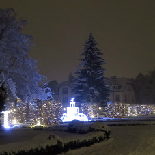 Zima w Parku