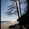 Plaża Gdynia-Redłowo
