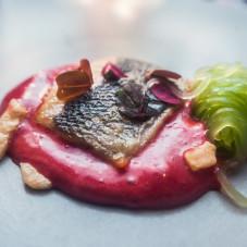 Okoń morski, buraczany sos holenderski, spaghetti z ogórka kompresowane w różowym winie