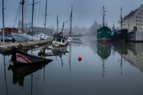 Wtorkowa mgła