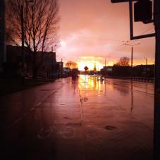 Cisowa deszczowego wieczoru