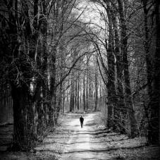 Samotny spacer.