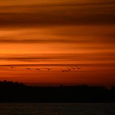 zachód słońca Rewa