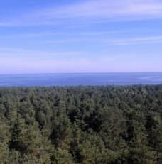 Widok na piękno Wyspy Sobieszewskiej ze szczytu zbiornika wodnego Kazimierz