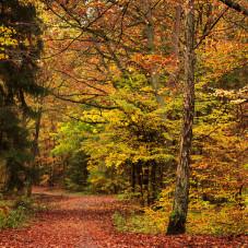 Wielki Kack jesiennie