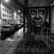 Bezsenność - Gdynia, Działki Leśne