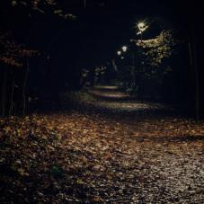Stogi nocą