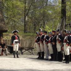musztra wojsk epoki napoleońskiej