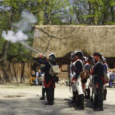 musztra piechoty epoki napoleońskiej