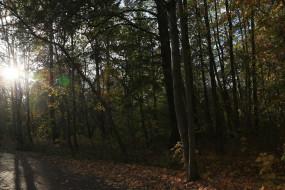 Jesień w Parku REAGANA
