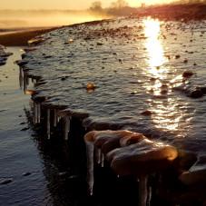 Plaża w Brzeźnie w zimowej scenerii (2)