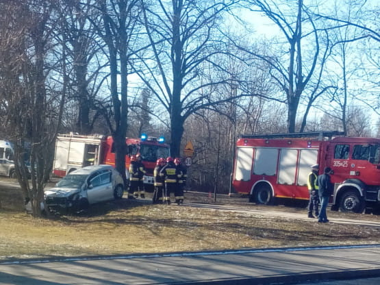 Auto wypadło z drogi w Jelitkowie