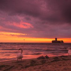 Gdynia Torpedownia