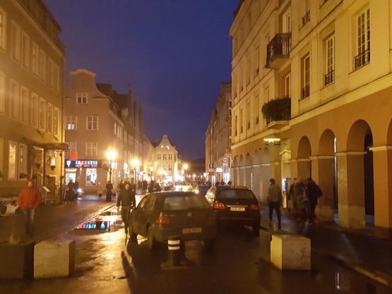 Łosie drogowe na Kołodziejskiej w Gdańsku