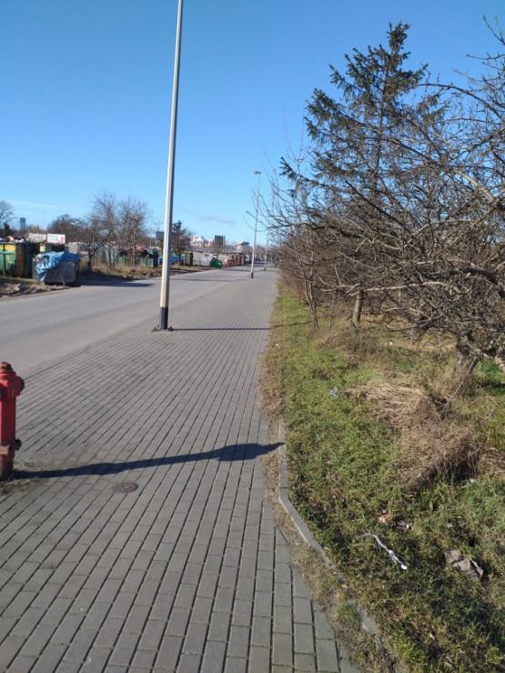 Składowisko śmieci w pasie drogowym