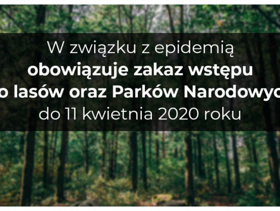 Tymczasowy zakaz wstępu do lasów i Parkó