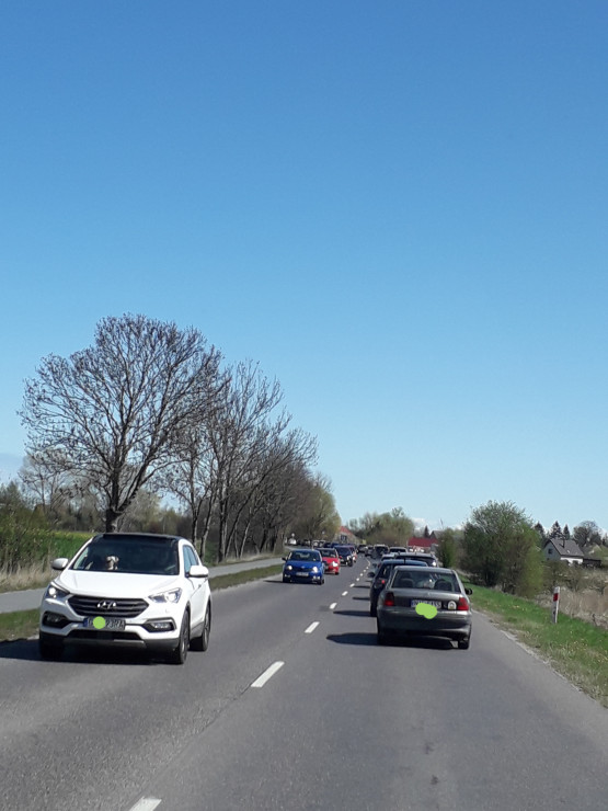 Korek na drodze do Sobieszewa
