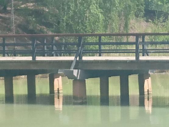 Zanieczyszczona woda przy Twierdzy Wisłoujście
