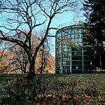 listopad w parku oliwskim