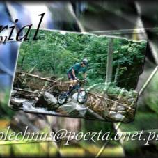 trial by Kamil (4)