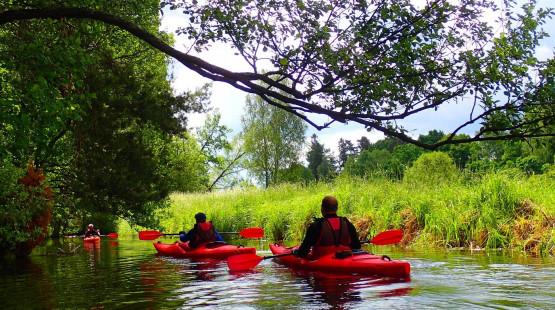 Spływ Redą, jedną z najbardziej zróżnicowanych krajobrazowo rzek północnych Kaszub