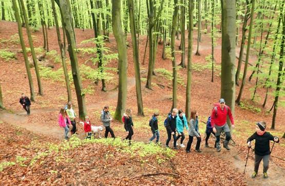 Zabierz dzieci, rodziców na wędrówkę po najpiękniejszych zakamarkach lasów Gdańskich