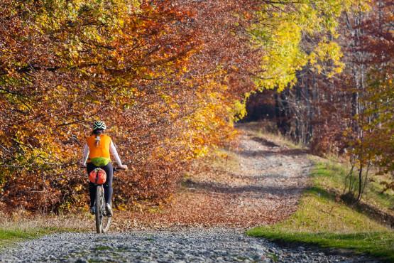 Jesień to przepiękna pora roku na rower. Nie jest już tak gorąco jak latem, nie przeszkadzają insekty, nic tylko odpowiednio się ubrać i ewentualnie jeśli będzie wilgotno założyć błotniki ;)