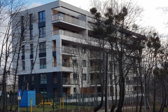 Projekt Piecewska