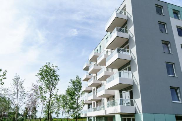 W ramach inwestycji w zielonym otoczeniu powstały cztery budynki.