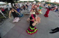 Flashmob i fiesta flamenco- Peńa Flamenca La Paloma 17.07.2014