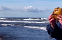 Jak poławiać bursztyny na Wyspie Sobieszewskiej