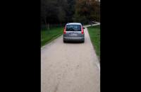 Samochód jadący przez Park Regana