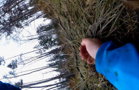 Wiosenny Tułacz, czyli upadki i wzloty
