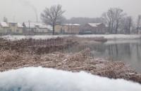 Ujeścisko: pierwszy śnieg