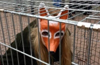 Happening na rzecz zakazu hodowli zwierząt futerkowych