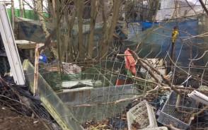 Usuwanie odpadów zgromadzonych przy ul. Barniewickiej