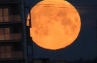 Niesamowity księżyc nad Gdańskiem