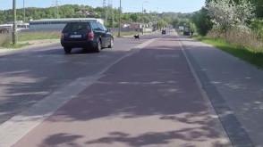 Piesek kozak - na luzaku pod koła auta