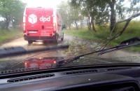 Korek na Jabłoniowej przez złamane drzewo