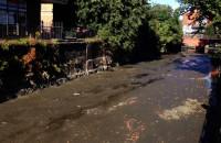 Kanał Raduni prawie bez wody