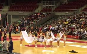 Cheerleaders Flex Sopot na meczu Trefl