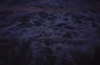 Dzika plaża koło polanki redłowskiej