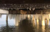 Sople i kaczki pod molo w Brzeźnie