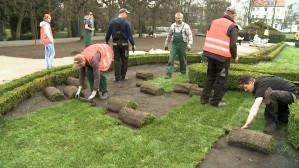 Nowa trawa w Parku Oliwskim