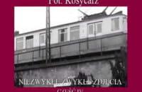 Fot. Kosycarz - część 4