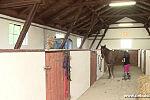 Przepiękne ranczo w Borach Tucholskich.