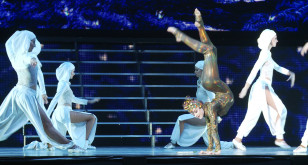 Lord of the Dance w Ergo Arenie
