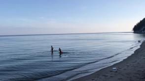 Morsy w centrum Gdyni nie rezygnują