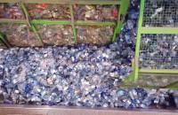 Co dzieje się z segregowanymi odpadami?